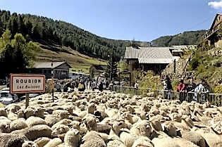 fete-transhumance-costumes-bergere-roubion