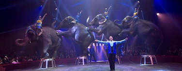 cirque-famille-arlette-gruss-elephants