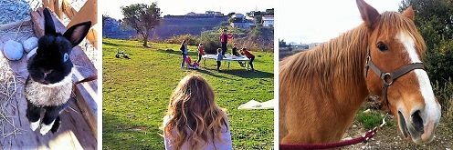 tour-poney-nice-enfants-jeux-animations