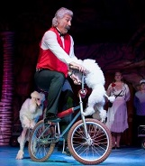 cirque-medrano-animaux-chiens-spectacle-famille