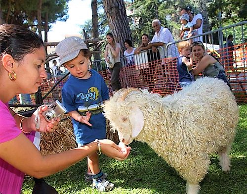 fete-terroir-saint-laurent-var-programme-animations-famille