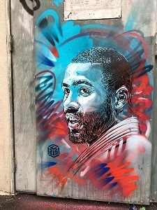 musee-national-sport-nice-exposition-c215-streetart