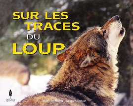 spectacle-famille-noel-parc-alpha-loup
