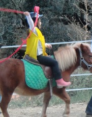 selle-poney-enfant-alpes-maritimes