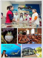 animations-famille-vacances-musee-oceanographique-monaco