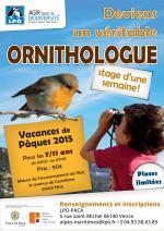 stage-enfants-nice-maison-enfants-ornithologue