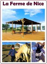 ferme-nice-restaurant-famille-poney-animaux