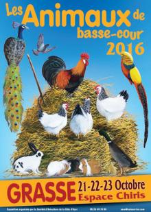 animaux-basse-cour-grasse-sortie-famille-exposition