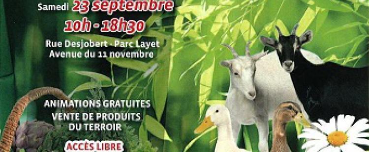 fete-terroir-saint-laurent-du-var-programme-2017