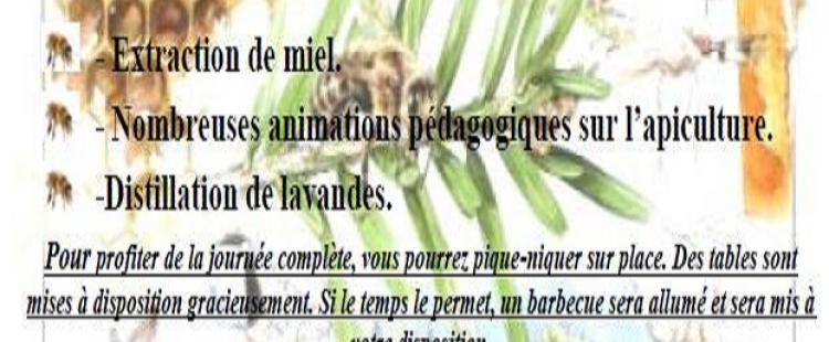journee-apiculture-coop-baous-vence-sortie-famille