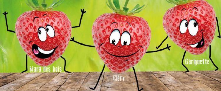 Fête des fraises à Carros