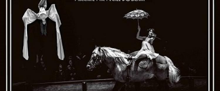 spectacle-equestre-zigzag-villeneuve-loubet-ete