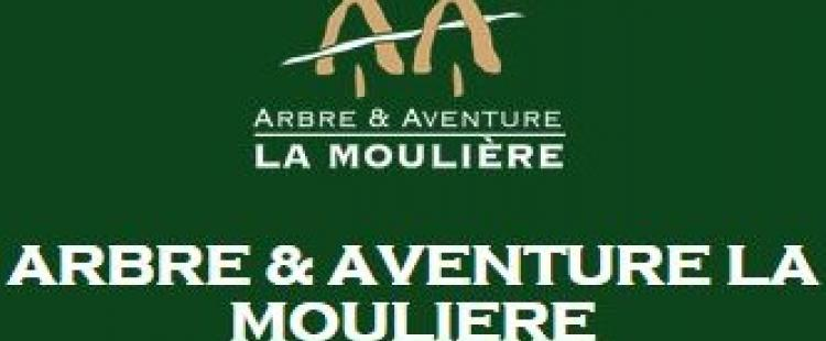 bon-reduction-arbre-aventure-la-mouliere