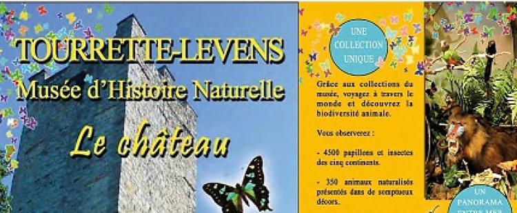 musee-papillons-tourrette-levens-histoire-naturelle