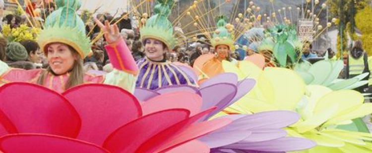 fete-mimosa-pegomas