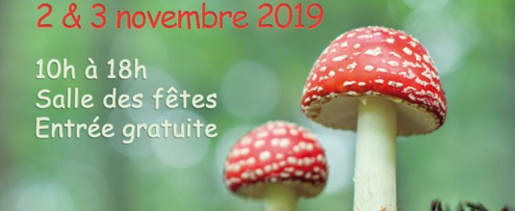salon-champignons-plantes-sauvages-tourrette-levens