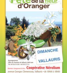 sortie-famille-fete-fleurs-oranger-vallauris-2019