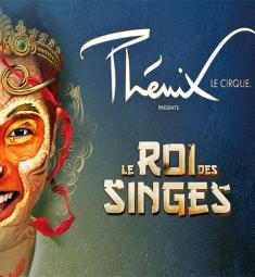 cirque-phenix-cannes-spectacle-roi-singes