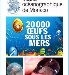 paques-musee-oceanographique-monaco-chasse-oeufs
