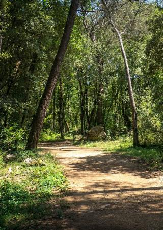 parc-departemental-sinodon-balade-pique-nique