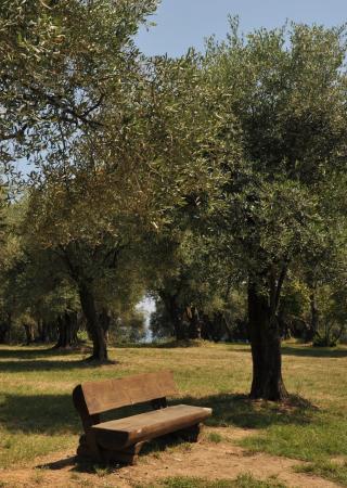 parc-estiennes-orves-nice