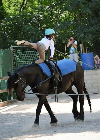 activite-enfants-equitation-stage-voltige