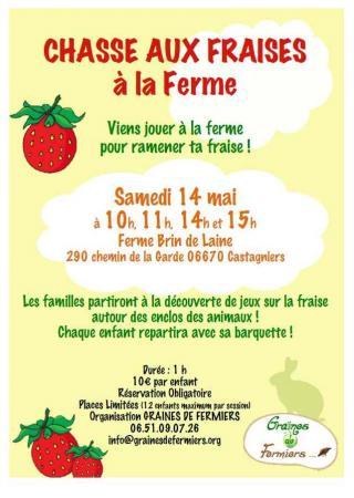 chasse-fraises-ferme-famille-enfants-graines-fermier