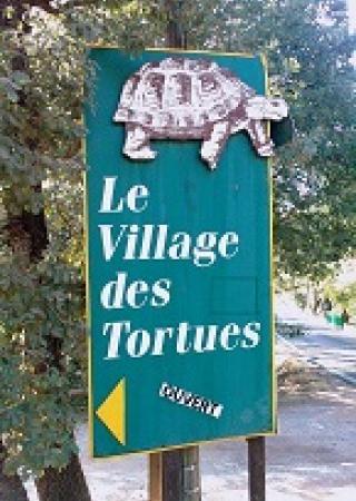 avis-village-tortues-gonfaron-sortie-famille