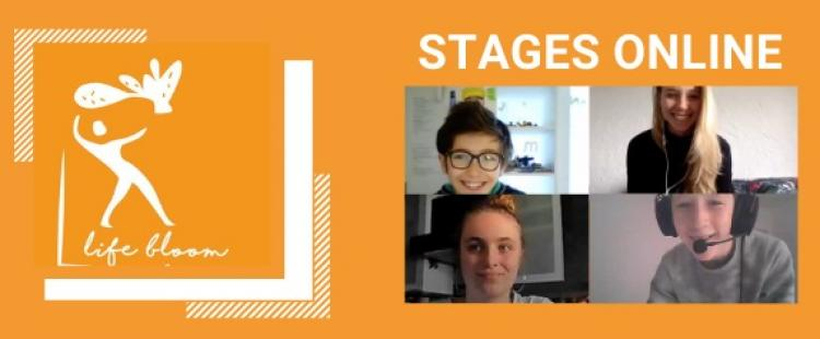 stages-visio-conference-life-bloom-academy