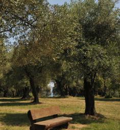 parc-estiennes-orves-nice-sortie-famille