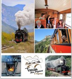 train-pignes-vapeur-sortie-famille-locomotive