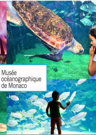 jeu-concours-musee-oceanographique-monaco-famille