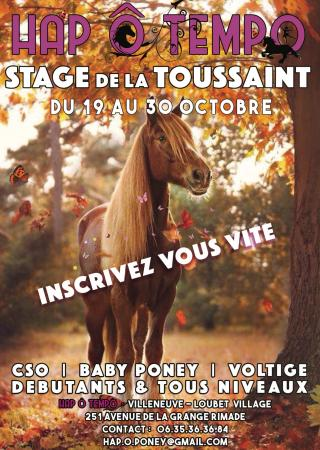 stages-vacances-poney-equitation-hap-tempo